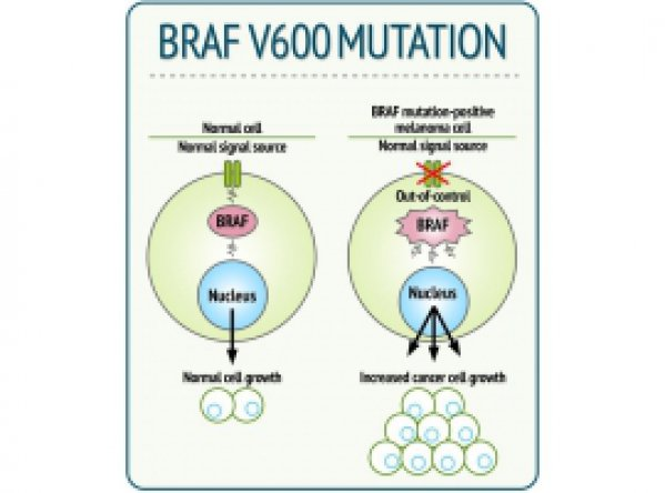 ctDNA BRAF V600 Mutation Detection Kit
